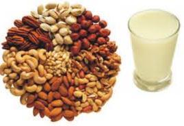 Leite Vegetal Benefícios