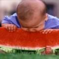 Seu filho come de tudo