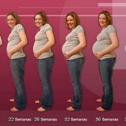 Ultimo Mês de Gravidez