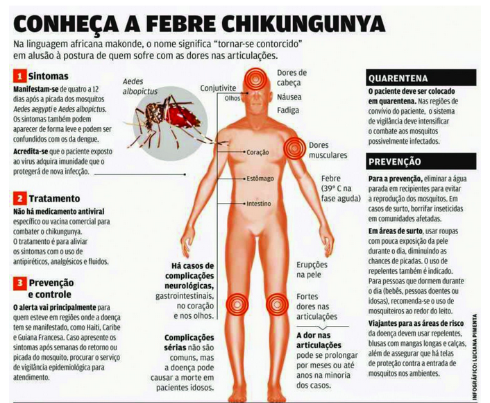febre  Chikungunya  evitar